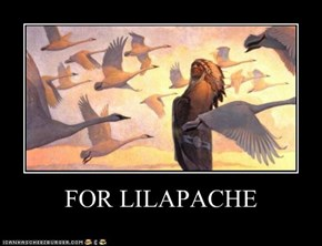 FOR LILAPACHE