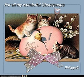 For all my wonderful Cheezpeeps
