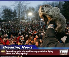 Breaking News - Groundhog gets stormed by angry mob for 'lying about the early spring'