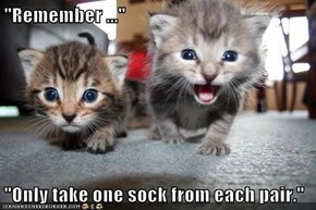 """Remember ...""  ""Only take one sock from each pair."""