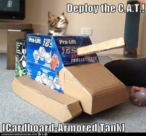 The Latest in Feline Defense Technology