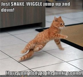 Boogie Down, Kitty!