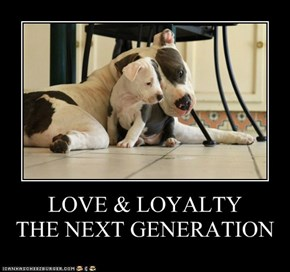 LOVE & LOYALTY        THE NEXT GENERATION