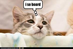 i so board