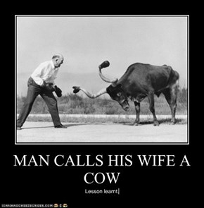 MAN CALLS HIS WIFE A COW