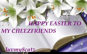 HAPPY EASTER TO MY CHEEZFRIENDS    luvmy8catz