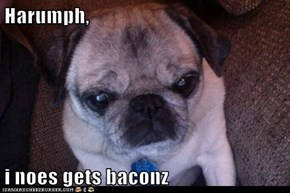 Harumph,  i noes gets baconz