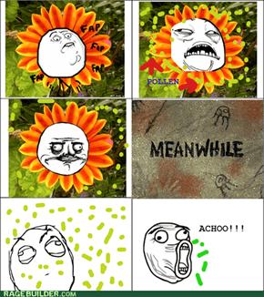 Flower Rage!!!