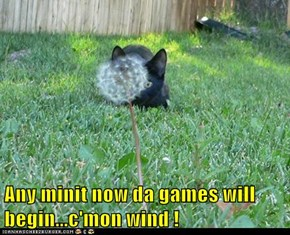 Any minit now da games will begin...c'mon wind !