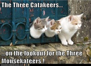 The Three Catakeers...  ...on the lookout for the Three Mousekateers !