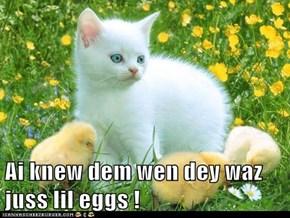 Ai knew dem wen dey waz juss lil eggs !