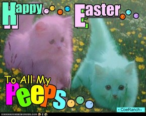 Who Doesn't love PEEPS!