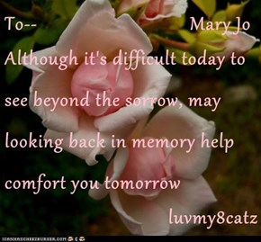 To--                               Mary Jo Although it's difficult today to see beyond the sorrow, may looking back in memory help comfort you tomorrow luvmy8catz