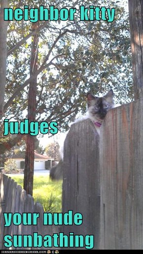 neighbor kitty  judges your nude sunbathing