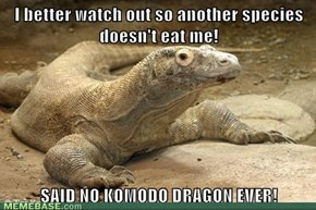 You Don't Know 'Bout Komodo!