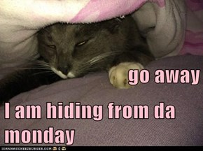 go away I am hiding from da monday