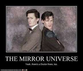 THE MIRROR UNIVERSE