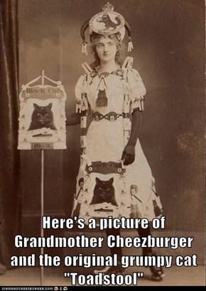 Grandmother Cheezburger and Toadstool