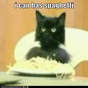 i can has spaghetti
