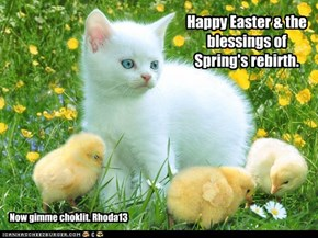 To all my Peeps everywhere