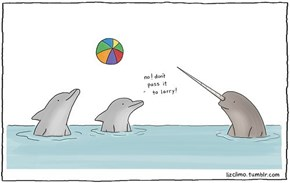 Narwhals are Way Better at Fencing Than They Are at Playing With Beach Balls