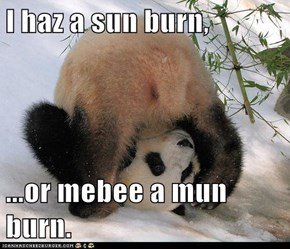 I haz a sun burn,  ...or mebee a mun burn.