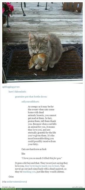 Cats Are Hardcore, Man