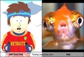 INSTRUCTOR Totally Looks Like fish
