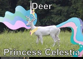 Deer   Princess Celestia