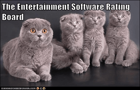 The Entertainment Software Rating Board