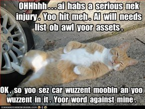 Scam kitteh iz scamming.