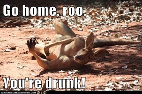 Go home, roo.  You're drunk!