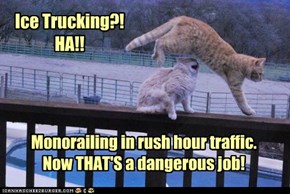 Specially on your elevated tracks!
