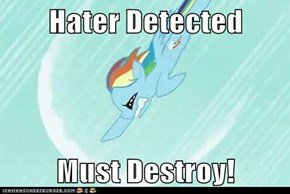 Hater Detected  Must Destroy!