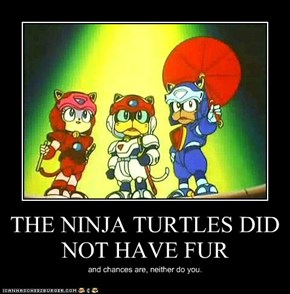 THE NINJA TURTLES DID NOT HAVE FUR