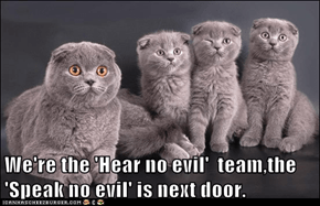 We're the 'Hear no evil'  team,the 'Speak no evil' is next door.