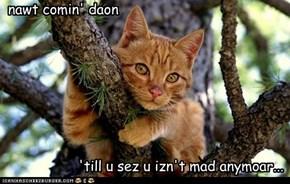 nawt comin' daon 'till u sez u izn't mad anymoar...