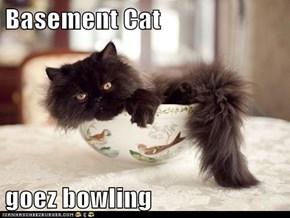 Basement Cat  goez bowling