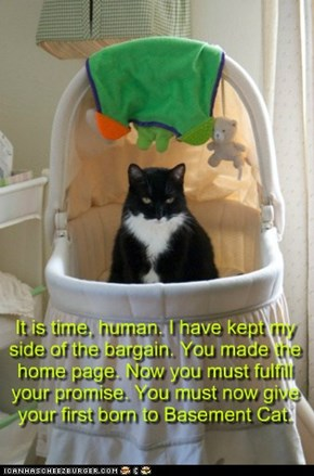It is time, human. I have kept my side of the bargain. You made the home page. Now you must fulfill your promise. You must now give your first born to Basement Cat.