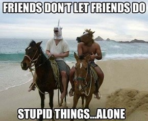 And Nobody Can Recognize Stupid Things Like a Horse