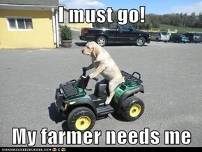 I must go!  My farmer needs me