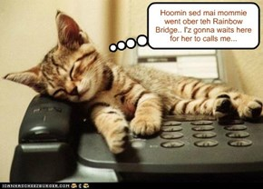 Waiting for an important call...