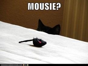 MOUSIE?