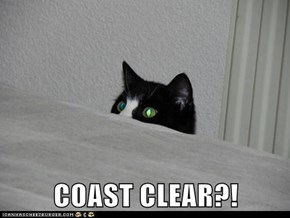 COAST CLEAR?!