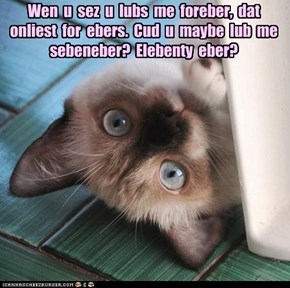Wen  u  sez  u  lubs  me  foreber,  dat  onliest  for  ebers.  Cud  u  maybe  lub  me  sebeneber?  Elebenty  eber?