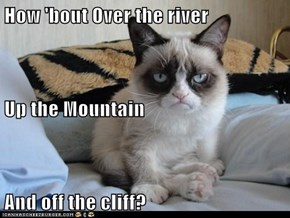 How 'bout Over the river Up the Mountain And off the cliff?