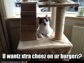 U wantz xtra cheez on ur burgerz?