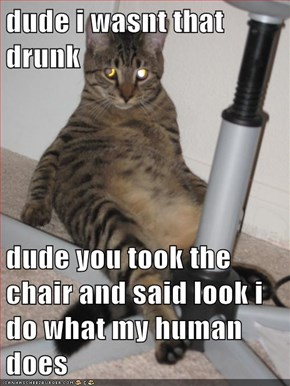 dude i wasnt that drunk  dude you took the chair and said look i do what my human does