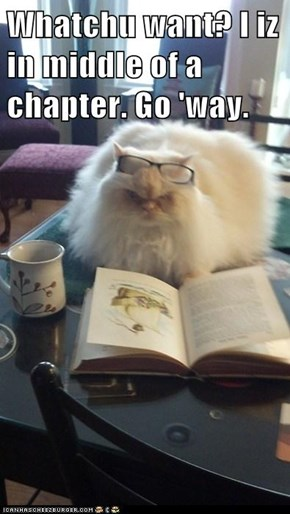Whatchu want? I iz in middle of a chapter. Go 'way.