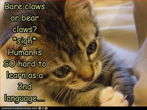 Bare claws or bear claws? *sigh* Human is SO hard to learn as a 2nd language....
